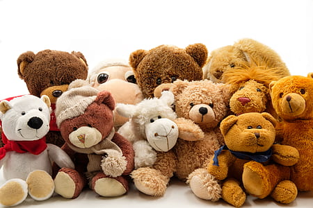 brown bear plush toy lot on white background