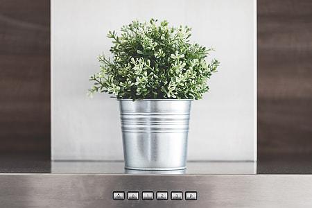 Kitchen Decoration: Green Flower in Metallic Flowerpot