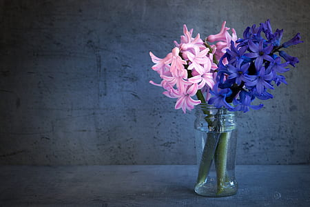 pink and purple petaled flowers inside clear vase