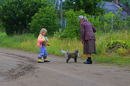 cat between toddler and woman near green grass field