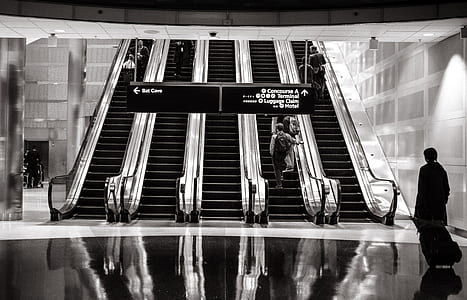 greyscale photo of transportation terminal escalators