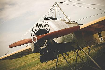 Frechdachs Old Plane
