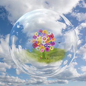 assorted-color daisies and roses inside bubble