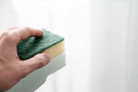 person holding a sponge