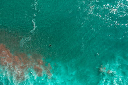 aerial photography of sea