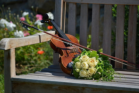 brown violin and yellow rose bouquet