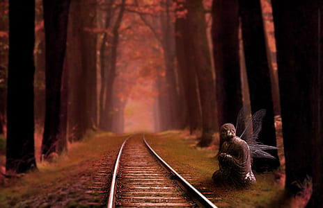 fairy beside train rail surrounded of tall trees painting