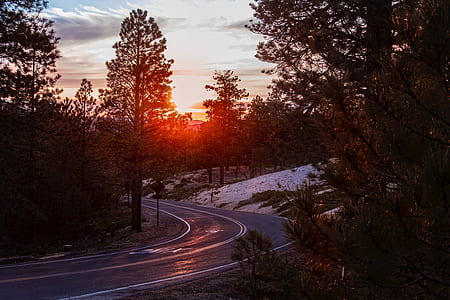 time lapse photography of blind curve road under sunrise