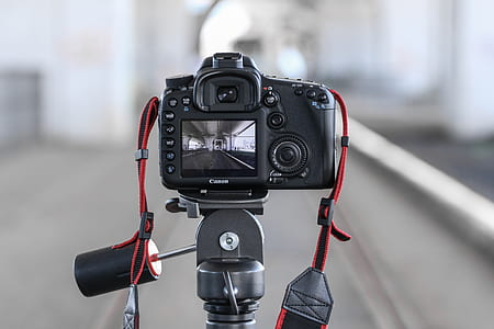 macro photography of black Canon DSLR camera