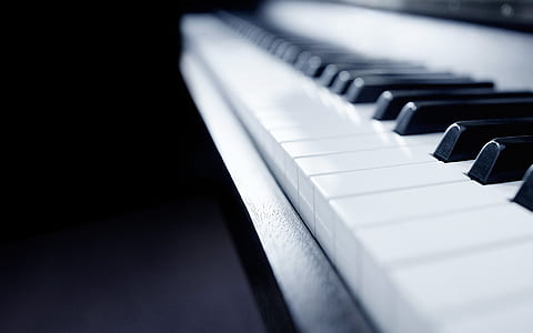 close up photo of white and black piano