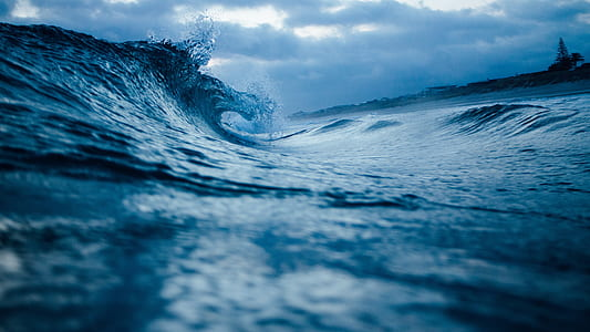 macrophotograph of ocean waves