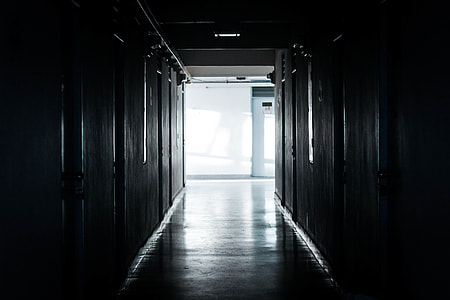 photography of hallway