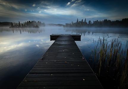 duck bridge on body of water