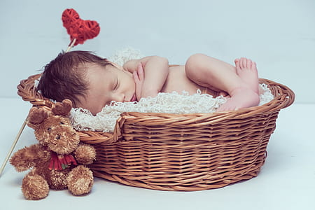 baby sleeping inside wicker bassinet beside moose plush toy
