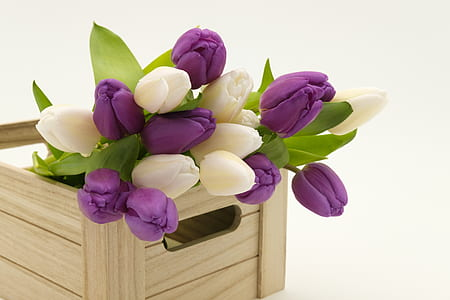 white and purple petaled flowers on brown wooden crate