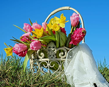 yellow daffodil, red tulips, and red hyacinth flowers with basket