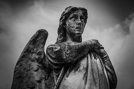 photo of angel concrete statue