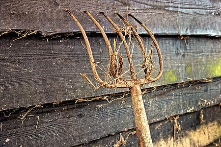 brown rake