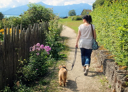 woman in white shirt and blue jeans walking with golden retriever puppy