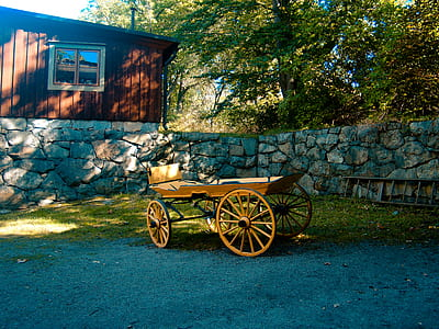 Brown Carriage on Green Grass Lawn