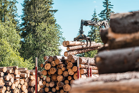Timber Truck Logging Forestry Operations