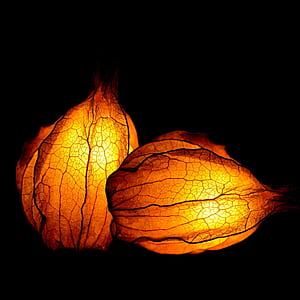 two orange leaf lamps