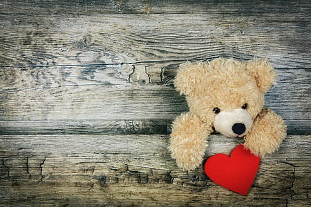 brown teddy bear plush toy holding red heart