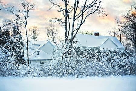 two houses covered by snow during daytime