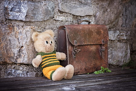 bear plush toy beside brown leather handbag