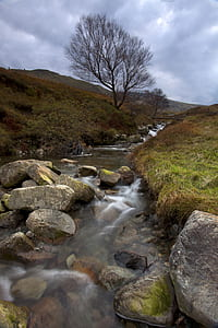 Waters Flowing Calmly in the River
