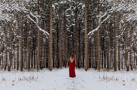 woman in red long dress stands in snow covered field in front of trees
