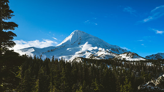 mountain filled with snow with green trees under the blue sky