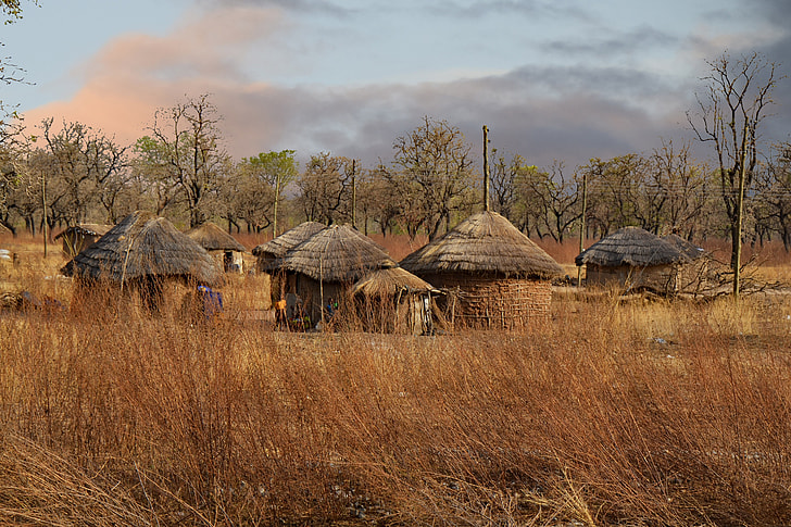 brown houses near brown wheat field