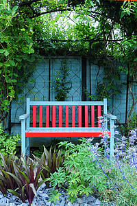 white and red wooden Windsor bench under shade of tree