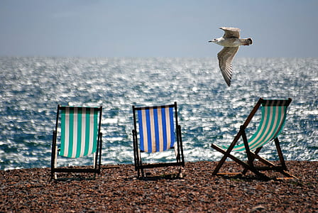 3 Green and Blue Beach Chairs on Brown Sea Shore