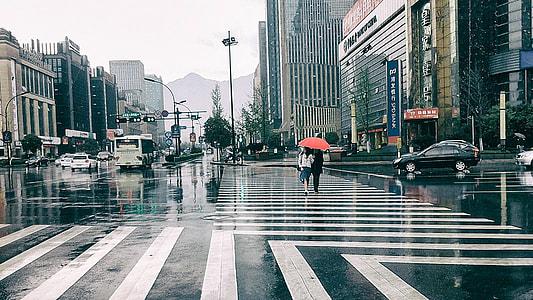 male and female walk on pedestrian holding umbrella