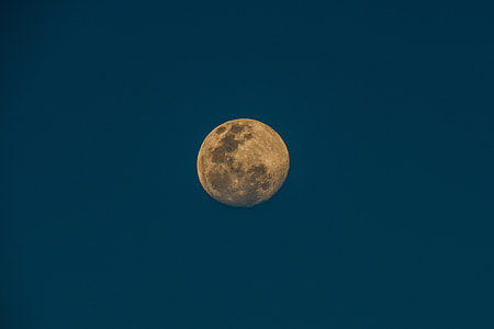 worm's eye view of full moon