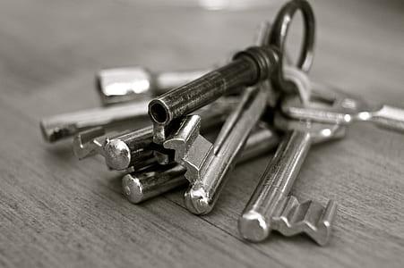 stainless steel skeleton key lot
