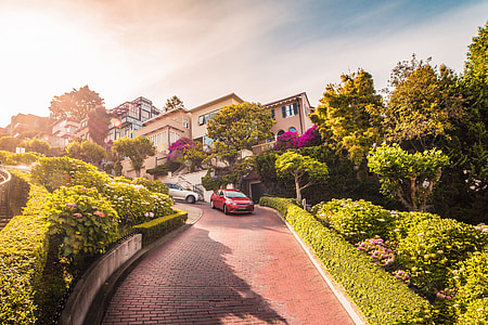 Cars Descending Lombard Street in San Francisco, California