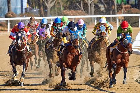 men riding horses at daytime