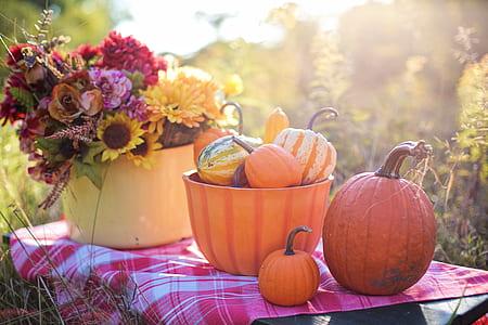 pumpkins on table near basket of flowers
