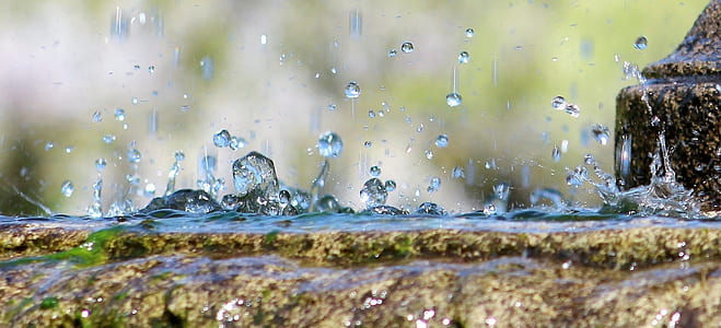 photography of water drop