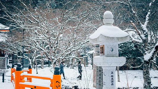 orange wooden bridge railings at winter