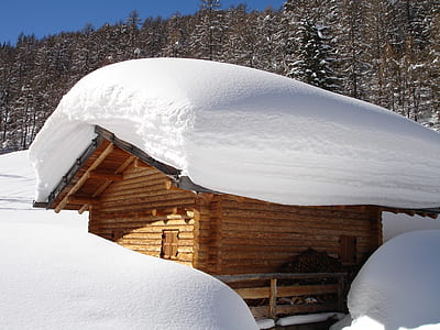 brown wooden shed covered white snow during daytime