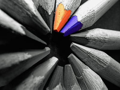 photo of gray, orange, and blue coloring pencils