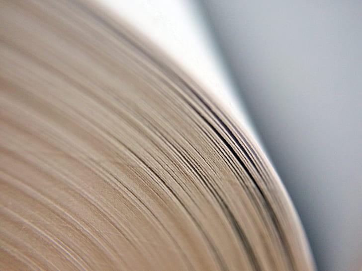 book, school, macro, educate, read, reading