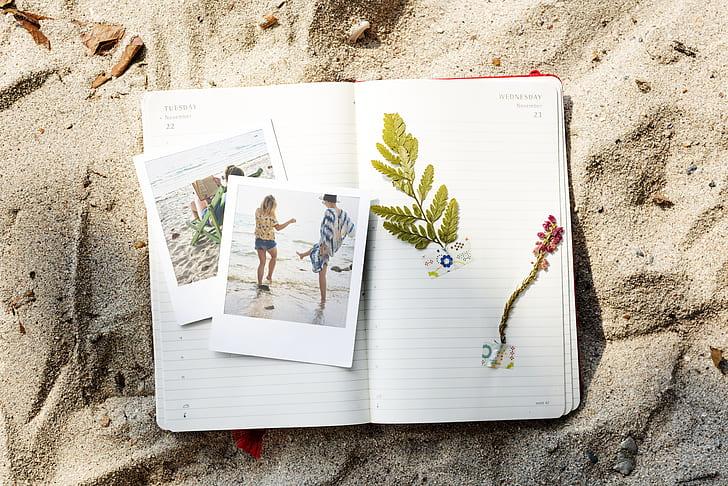 adventure, beach, care, caucasian, coast, craft