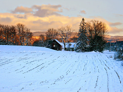 snow field during dawn