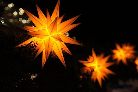 orange string lights in closeup photography