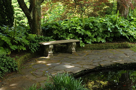 gray concrete bench surrounded by trees